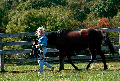 Woman takes her horse out on a beautiful fall day