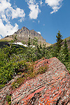 A colorful red rock is seen on a bright sunny day with puffy white clouds in Glacier National Park, Montana.
