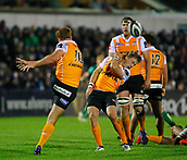 4th November 2017, Galway Sportsground, Galway, Ireland; Guinness Pro14 rugby, Connacht versus Cheetahs; Ernst Stapelberg clears the ball just past team mate Fred Zeilinga for the Toyota Cheetahs