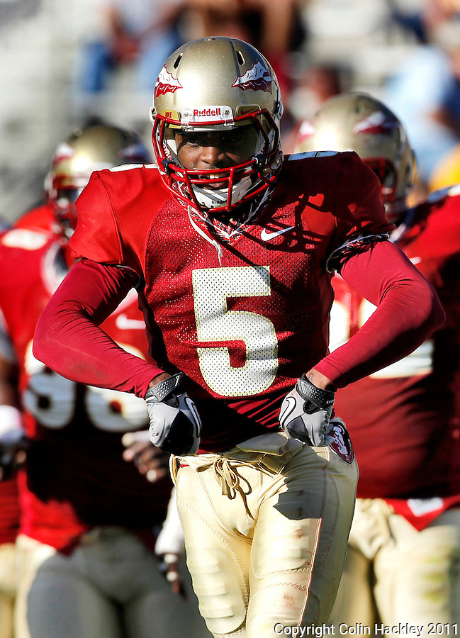 TALLAHASSEE, FLA. 4/16/11-FSUG&G041611 CH-Garnet's Greg Reid celebrates after de-cleating Greg Dent Gold's during second half action in  the Florida State University Garnet and Gold game Saturday in Tallahassee. Garnet beat Gold 19-17...COLIN HACKLEY PHOTO