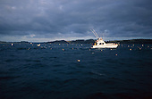 A deep sea fishing boat trolls through sea birds while catching bait fish before heading out to the big game fishing grounds, Bay of Islands. Northland, New Zealand.