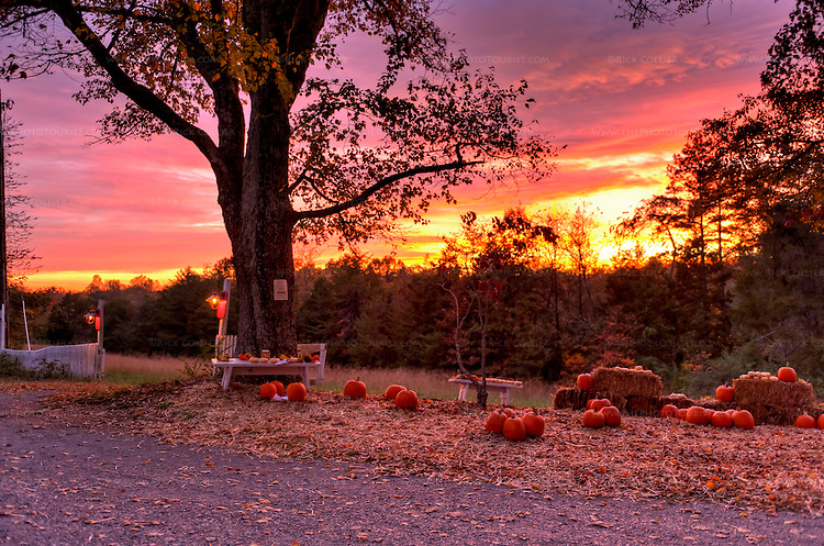 A vibrant red and orange sunset backlights a fall seasonal display at the edge of the drive at High Meadows Vineyard Inn.
