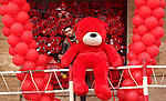 A Palestinian vendor carries a red teddy bear outside his shop on Valentine's day in Gaza city on February 14, 2017. Valentine's Day is increasingly popular in the region as people have taken up the custom of giving flowers, cards, chocolates and gifts to sweethearts to celebrate the occasion. Photo by Ashraf Amra