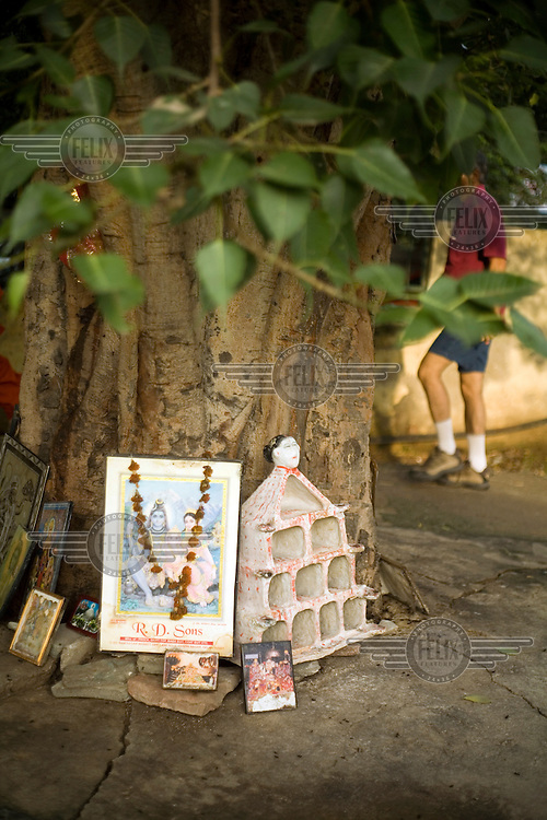 People on their early morning exercise around a small park walk past a tree that has been made into a shrine in Janakpuri, New Delhi.
