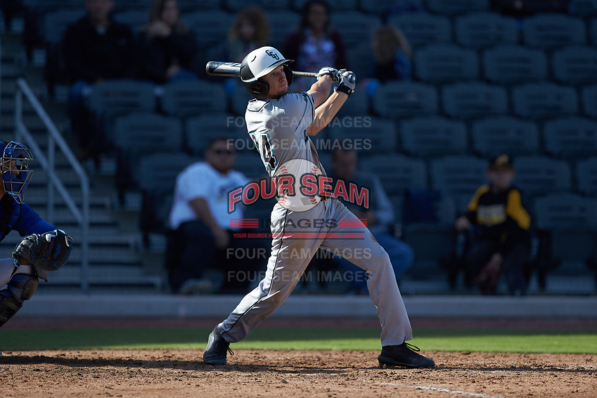 Morgan Hyde (24) of the Coastal Carolina Chanticleers follows through on his swing against the Duke Blue Devils at Segra Stadium on November 2, 2019 in Fayetteville, North Carolina. (Brian Westerholt/Four Seam Images)