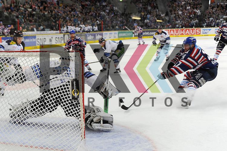 Mannheims Marcus Kink (Nr.17) gegen Straubings Jason Bacasihiua (Nr.33)  beim Spiel in der DEL, Adler Mannheim - Straubing Tigers.<br /> <br /> Foto &copy; Ice-Hockey-Picture-24 *** Foto ist honorarpflichtig! *** Auf Anfrage in hoeherer Qualitaet/Aufloesung. Belegexemplar erbeten. Veroeffentlichung ausschliesslich fuer journalistisch-publizistische Zwecke. For editorial use only.