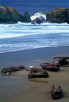 769550210 sea stacks and storm surf along a driftwood strewn beach near bandon oregon