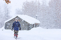 Walking along a path by log cabin in Wiseman, Alaska, Arctic.