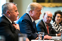 US President Donald J. Trump (C) speaks with the media before a meeting with his cabinet in the Cabinet Room of the White House in Washington DC, USA, 09 April 2018. Trump said he will decide in the next few days whether  the US will respond militarily for the reported chemical weapons attack in Syria.<br /> <br /> CAP/MPI/RS<br /> &copy;RS/MPI/Capital Pictures