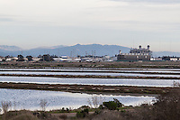 The recently constructed  Russell City Energy Center is a natural gas-fired electric power plant that is at the very edge of a wetland wildlife refuge, part of the Hayward Area Recreational District.