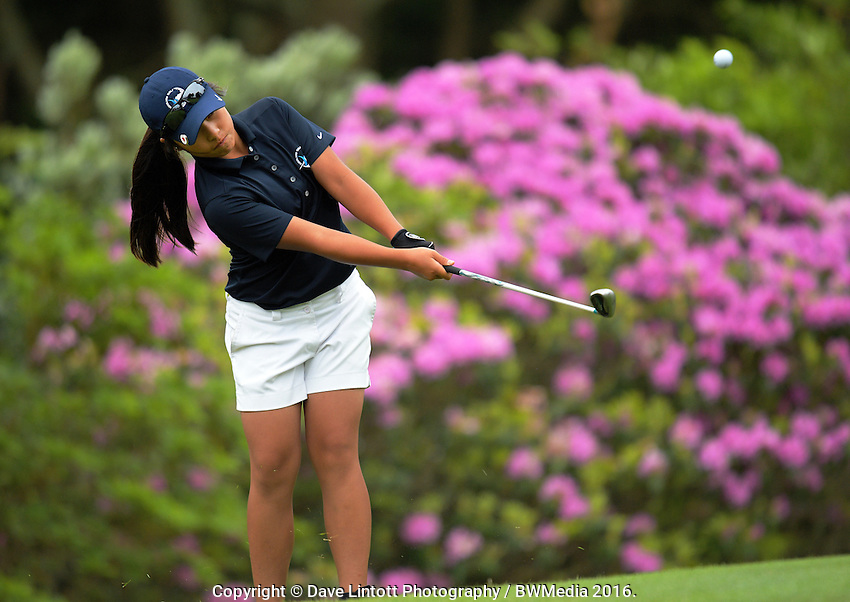 Carmen Lim (Auckland) plays the 15th. 2016 Toro Women's Interprovincial Golf Championship at Westown Golf Club in New Plymouth, New Zealand on Saturday, 10 December 2016. Photo: Dave Lintott / lintottphoto.co.nz