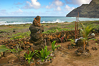 Sacred rocks with ti leaves and other plants along the Ka Iwi coastline along Kalaniana'ole Highway, near Makapu'u Beach and Lighthouse, O'ahu.