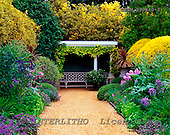 Tom Mackie, FLOWERS, photos, Ascott Gardens, Wing, Buckinghamshire, England, GBTM990440-2,#F# Garten, jardín