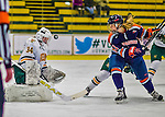 2014-01-04 NCAA: Syracuse at Vermont Women's Hockey