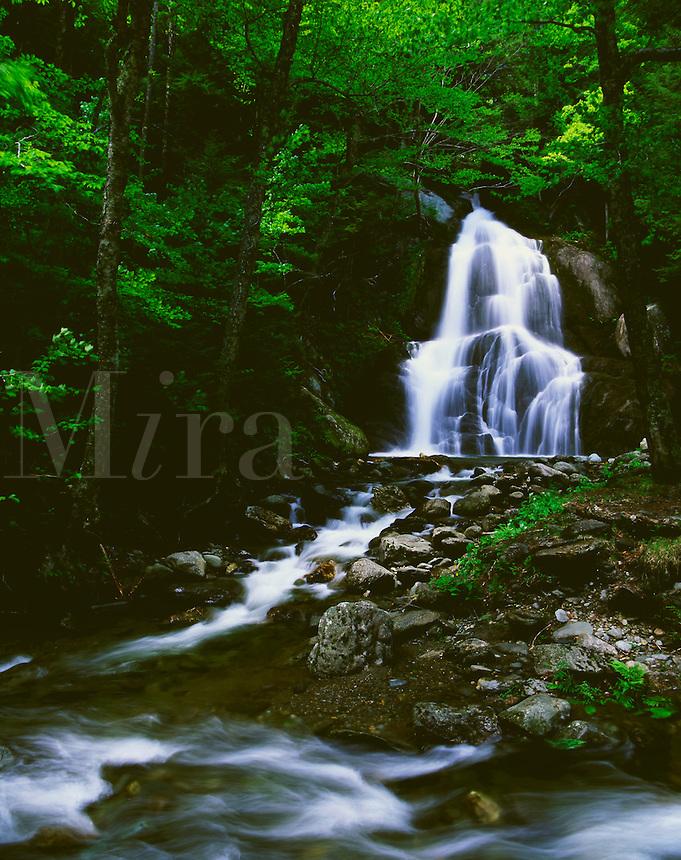 Moss Glenn Falls Green Mountain National Forest Vermont