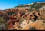 Fairyland Canyon, Early Morning, Bryce Canyon National Park, Utah