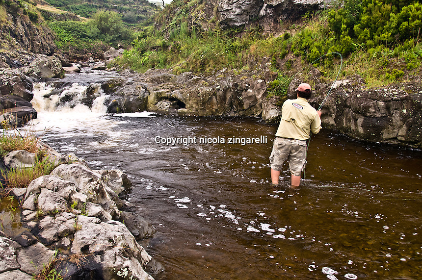 A fly fisherman has set the hook after a rainbow trout hit his fly in a small river in the island of Flores, azores islands