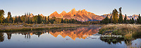 67545-08909 Sunrise and fall color at Schwabacher Bend Landing, Grand Teton National Park, WY