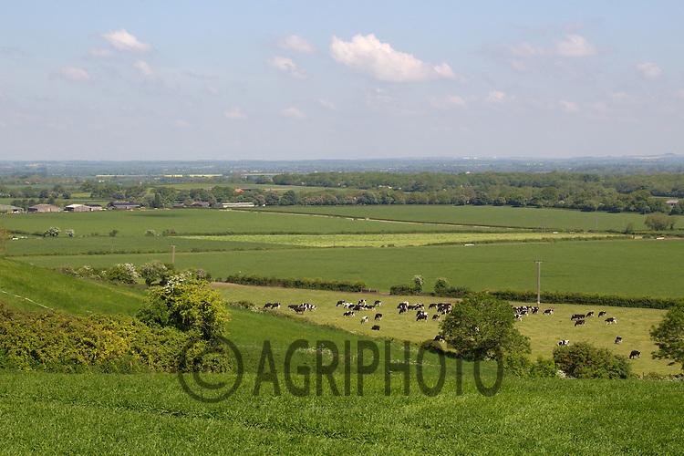 Rolling Landscape Oxfordshire<br /> Picture Tim Scrivener 07850 303986<br /> tim@agriphoto.com<br /> ?.covering agriculture in the UK?.