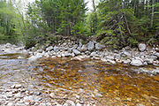Location of a where a trestle was along a spur line of the East Branch & Lincoln Railroad (1893-1948) in the Thoreau Falls Valley of the Pemigewasset Wilderness in Lincoln, New Hampshire. This spur line came off of the North Fork Branch of the railroad, near Jumping Brook. It crossed the North Fork of the East Branch Pemigewasset River in this location and traveled a short distance on the East side of the river ending at a landing / work area.