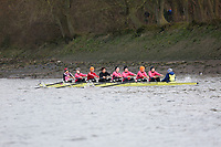 Crew: 164   Westminster School   J15<br /> <br /> Quintin Head 2019<br /> <br /> To purchase this photo, or to see pricing information for Prints and Downloads, click the blue 'Add to Cart' button at the top-right of the page.