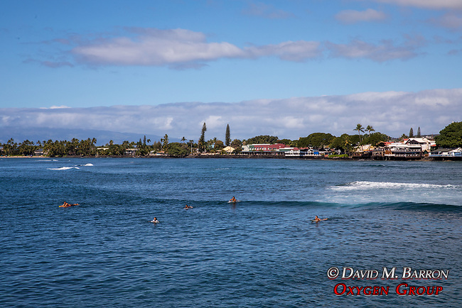 Surfers At Lahaina Harbor