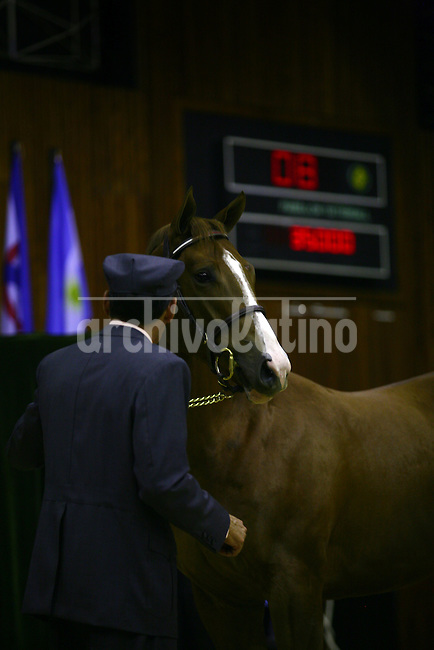 American billionaire Jess Jackson in an horse auction in San Isidro race track in the outskirts of Buenos Aires, Argentina.