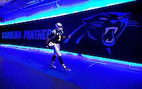 Carolina Panthers 2014-2015 Season
