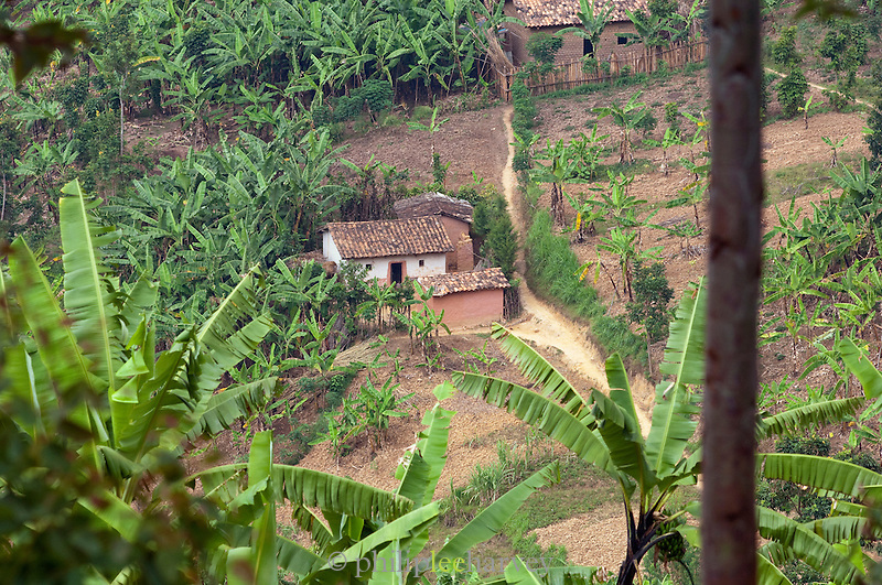 A small village near Parc National Des Volcans, Rwanda