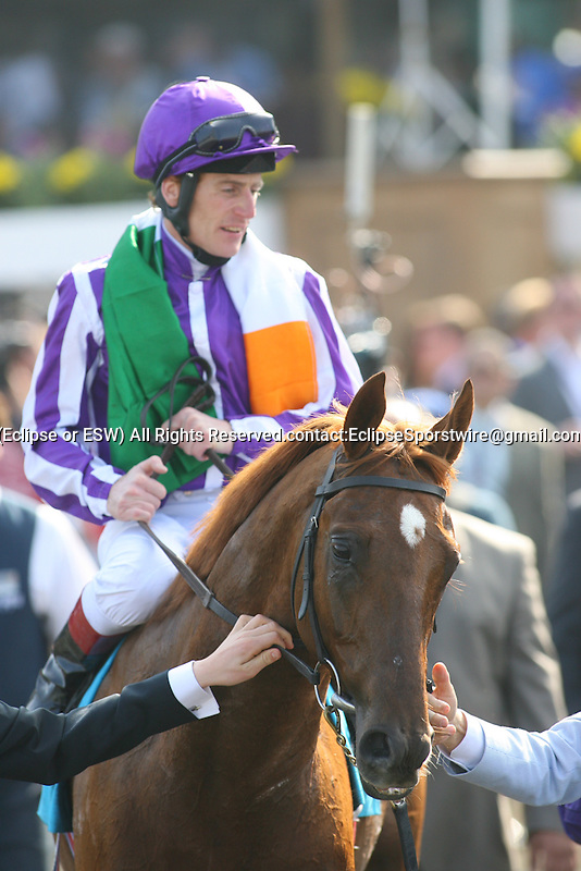 6 November 2009: Man of Iron and jockey Johnny Murtagh(inside) outrun Cloudy's Knight for the nose-length win in the Breeders' Cup Marathon at Santa Anita Race Track in Arcadia, CA...