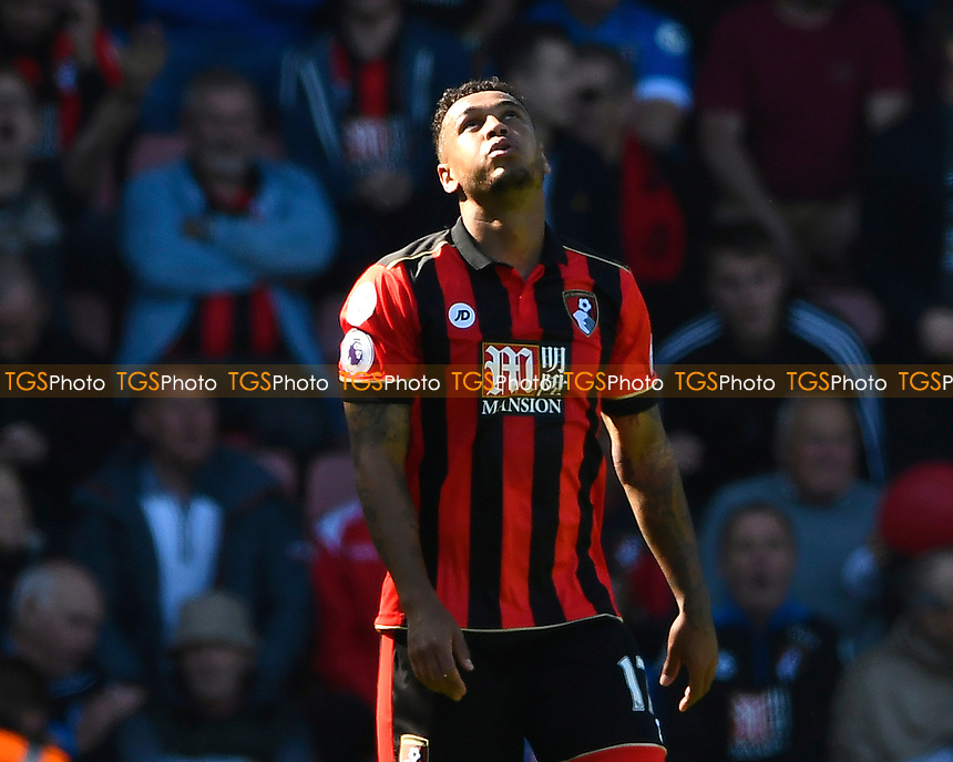Joshua King of AFC Bournemouth after scoring the second and winning goal during AFC Bournemouth vs Burnley, Premier League Football at the Vitality Stadium on 13th May 2017