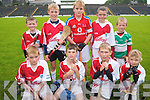 Children enjoying the hurling camp in Fitzgerald Stadium last week. .Front L-R Cathal O'Muirgheasa, Conal Gallagher and Sean Farndon and Brian O'Connor. .Back L-R Sean Guerin, Kieran O'Connor, Fiachra O'Muirgheasa, Michael Aherne and Liam Cronin.