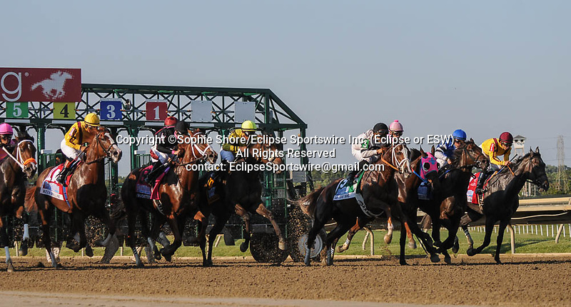 I'm a Chatterbox (no. 8), ridden by Florent Geroux and trained by Larry Jones, wins the grade 1 Cotillion for 3 year old fillies on September 19, 2015 at Parx Racing in Bensalem (Sophie Shore/Eclipse Sportswire)