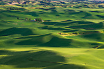 The Palouse, Whitman County, WA: Isolated farms amid rolling wheat fields