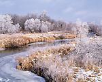Wapsipinicon River, Ackerson-Easterly Wildlife Area, Iowa