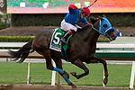 09-28-19 Awesome Again Stakes Santa Anita