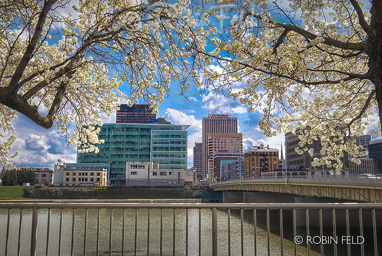Dayton Ohio skyline view with Main St. Bridge through spring blossoms.