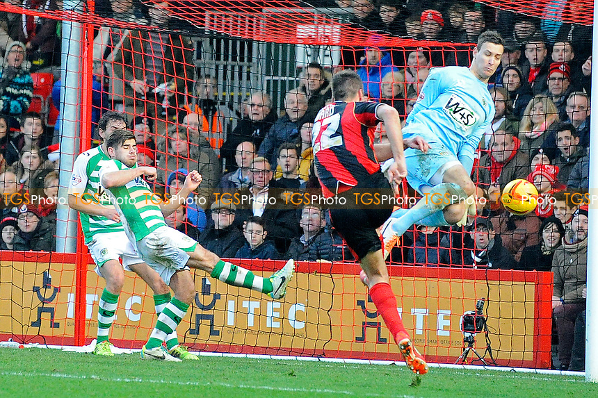 Elliott Ward of AFC Bournemouth shoots past Marek Stech of Yeovil Town but the effort is dis-allowed - AFC Bournemouth vs Yeovil Town - Sky Bet Championship Football at the Goldsands Stadium, Bournemouth, Dorset - 26/12/13 - MANDATORY CREDIT: Denis Murphy/TGSPHOTO - Self billing applies where appropriate - 0845 094 6026 - contact@tgsphoto.co.uk - NO UNPAID USE