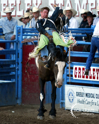 Greeley, Colorado PRCA cowboy Royce Ford scored an 85 point bareback ride on the Beutler & Son Rodeo Company bronc No Date Kate in front of his hometown fans at the July 29th performance of the Greeley Independence Stampede in Greeley, Colorado.
