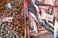 Fresh Sea Food & Fish - Clams, Mackeral - Chioggia - Venice Italy