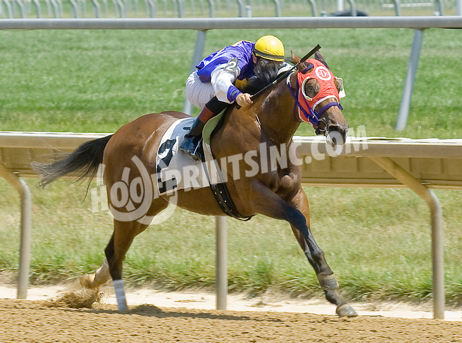 Elizabeth Lane winning at Delaware Park on 7/4/12
