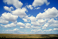 cumulus clouds forming over land in blue sky. weather, forecast, moisture.