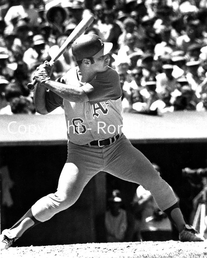 Oakland Athletics third baseman and Captain Sal Bando<br /> (1969 photo/Ron Riesterer)