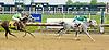 Missty Dancer winning at Delaware Park on 5/16/12