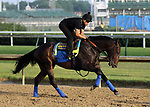 LOUISVILLE, KY -MAY 28: Restoring Hope, ridden by Humberto Gomez, gallops at Churchill Downs, Louisville, Kentucky, in preparation for the June 9 Belmont Stakes in New York. (Photo by Mary M. Meek/Eclipse Sportswire/Getty Images)