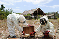 KENYA, Mombasa, Vanga, project income generation in rural areas, bee keeping / KENIA, Mombasa, Vanga, Diakonie Projekt, Bienenzucht zur Foerderung von Einkommen in laendlichen Gebieten