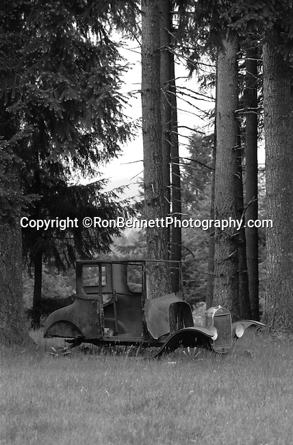 Antique car in Fir tree woods Oregon,  classic  car, vintage car in fir trees, Oregon, Pacific Ocean, Plains, woods, mountains, rain forest, desert, rain, Pacific Northwest, Fine Art Photography by Ron Bennett, Fine Art, Fine Art photography, Art Photography, Copyright RonBennettPhotography.com © Fine Art Photography by Ron Bennett, Fine Art, Fine Art photography, Art Photography, Copyright RonBennettPhotography.com ©