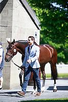 01-NZL-RIDERS: 2016 IRL-Tattersalls International Horse Trial