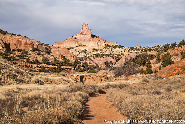 WIth spectacular views of the formation known as Church Rock, the hiking trail at Red Rock State Park near Gallup, New Mexico, is a hidden gem for day hikers.