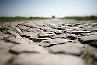 the protagonists<br /> <br /> 2015 Paris-Roubaix recon